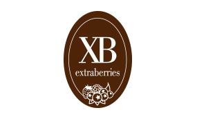 ExtraBerry