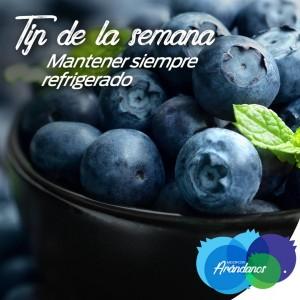 Tip Refrigerado