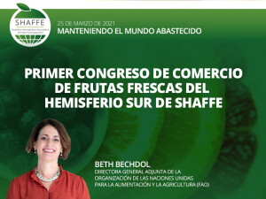 imagen noticia Web 04-03 español